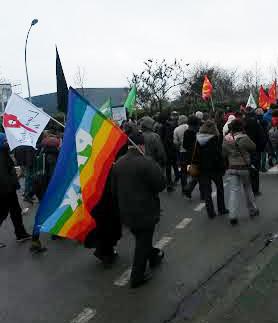 Succès de la marche contre l'état d'urgence le 23 janvier 2016